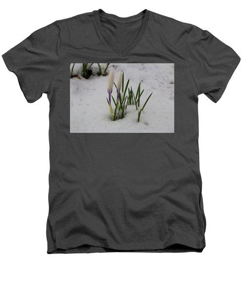 White Crocus In Snow Men's V-Neck T-Shirt