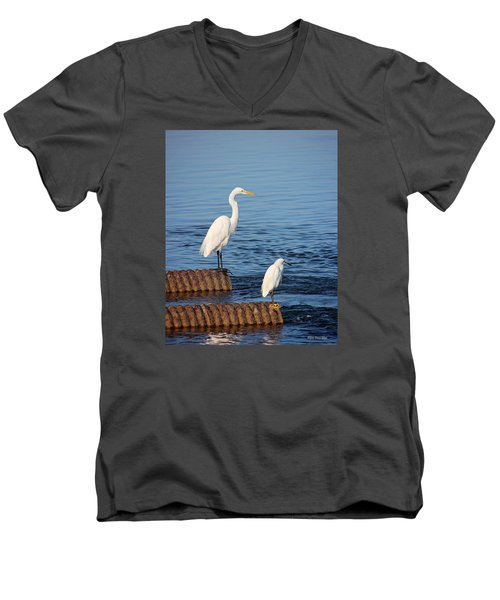 White Egrets Men's V-Neck T-Shirt
