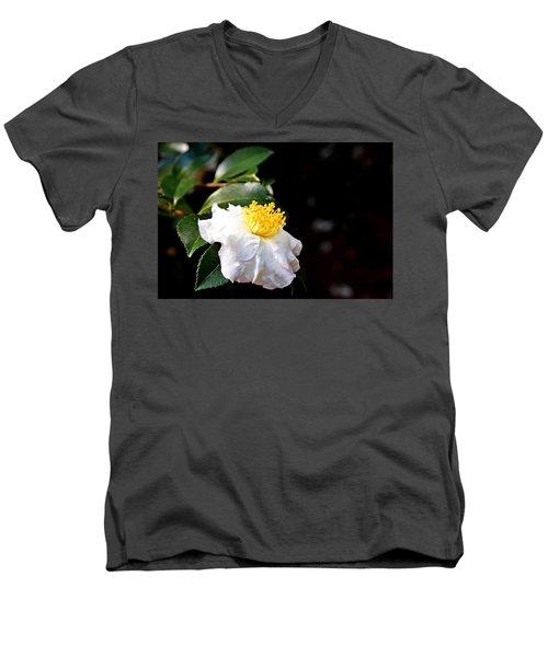White Flower-so Silky And White Men's V-Neck T-Shirt