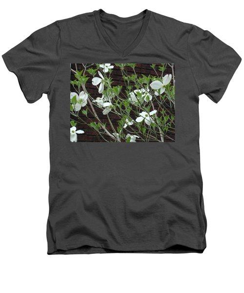 White Flowering Dogwood Men's V-Neck T-Shirt