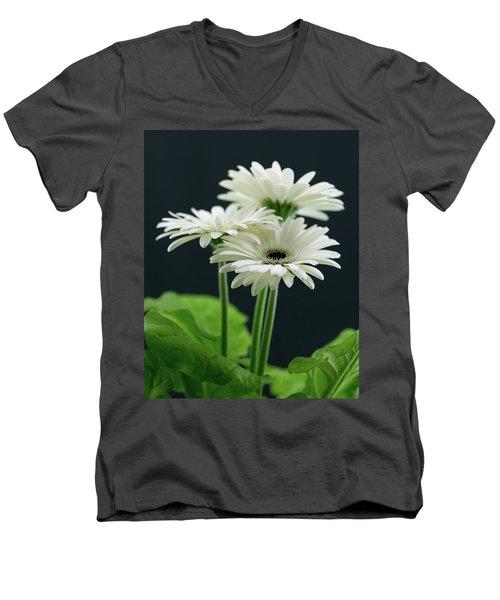 White Gerbers Men's V-Neck T-Shirt