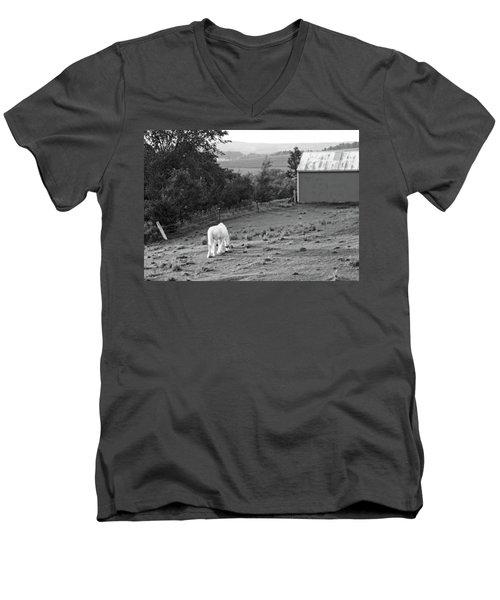 White Horse, New York Men's V-Neck T-Shirt