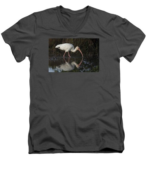 White Ibis Feeding In Morning Light Men's V-Neck T-Shirt