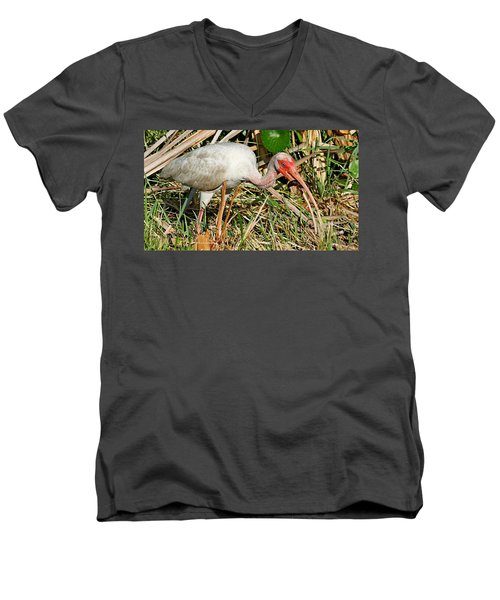 White Ibis With Crayfish Men's V-Neck T-Shirt