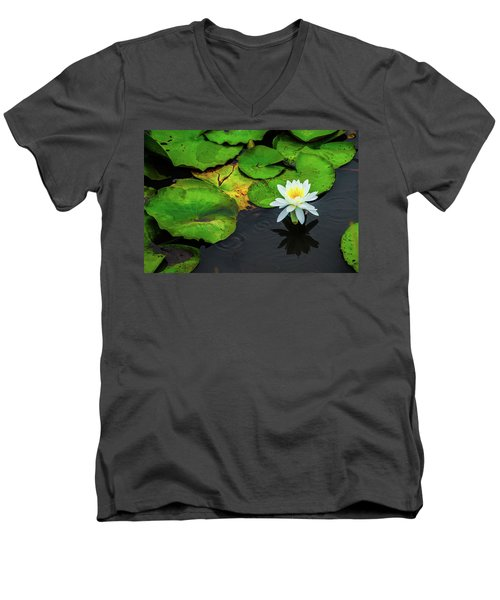 White Lily And Rippled Water Men's V-Neck T-Shirt