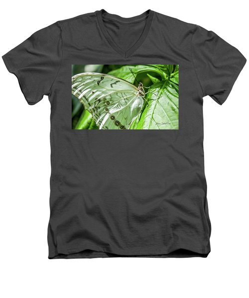 Men's V-Neck T-Shirt featuring the photograph White Morpho Butterfly by Joann Copeland-Paul