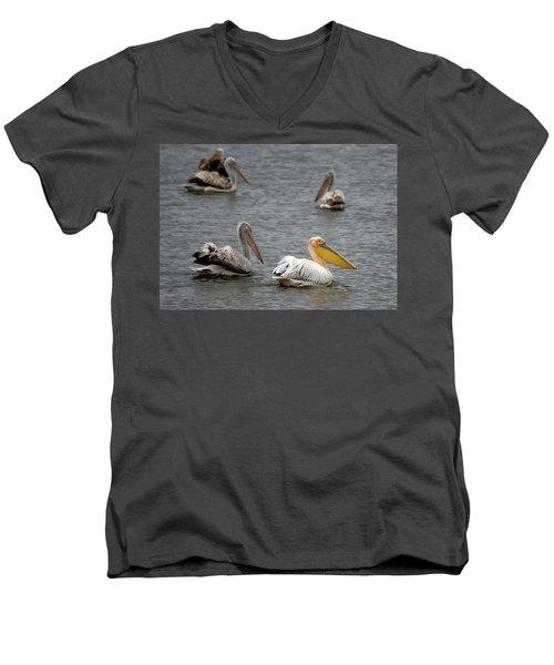 White Pelicans On Lake  Men's V-Neck T-Shirt