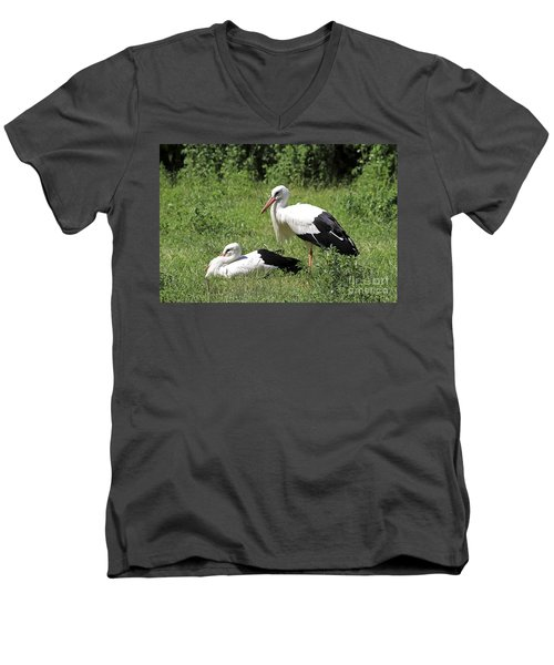 White Storks Men's V-Neck T-Shirt