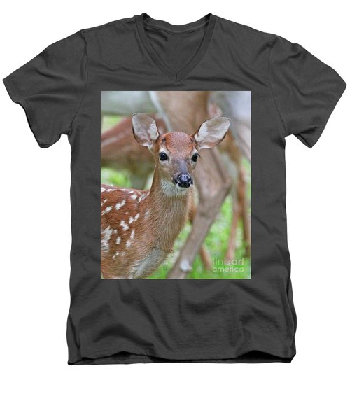 White Tail Deer Fawn Men's V-Neck T-Shirt
