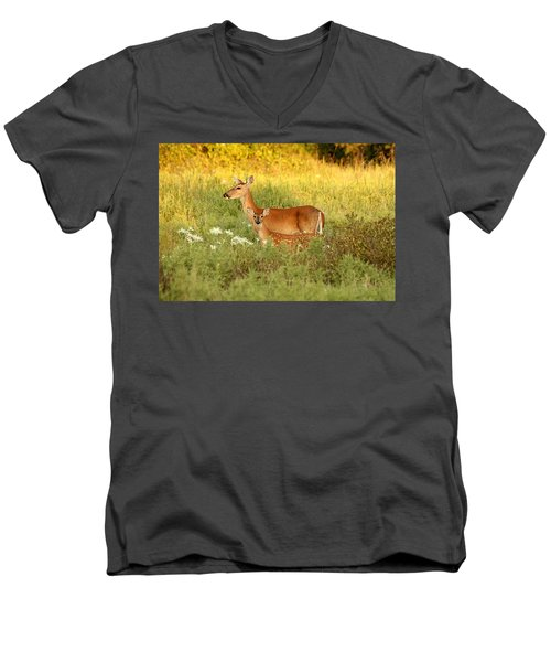 White-tail Doe And Fawn In Meadow Men's V-Neck T-Shirt