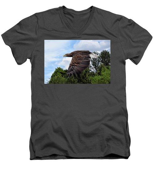 White Tailed Eagle Men's V-Neck T-Shirt