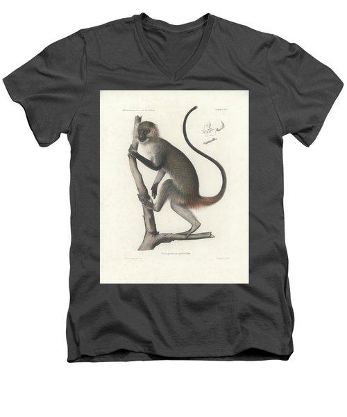 White Throated Guenon, Cercopithecus Albogularis Erythrarchus Men's V-Neck T-Shirt