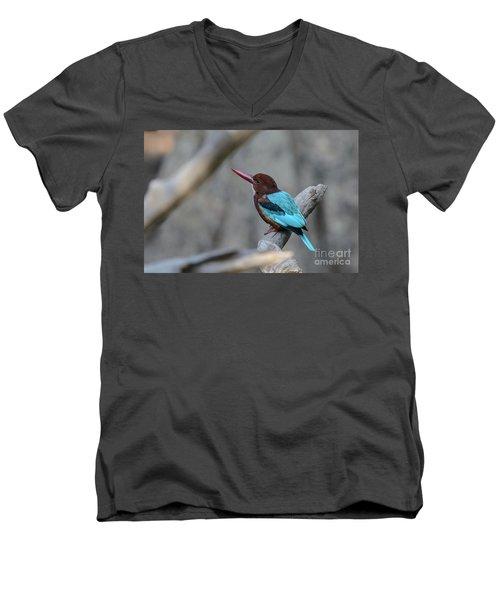 White-throated Kingfisher 02 Men's V-Neck T-Shirt