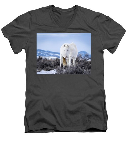 White Wild Horse Mystic Of Sand Wash Basin Men's V-Neck T-Shirt