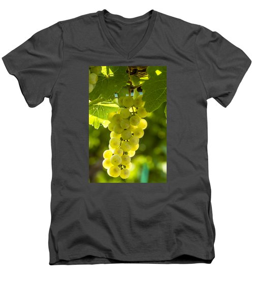 White Wine Grapes Lit By The Sun Men's V-Neck T-Shirt by Teri Virbickis