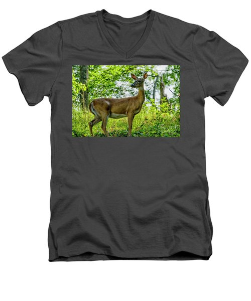 Men's V-Neck T-Shirt featuring the photograph Whitetail Deer  by Thomas R Fletcher