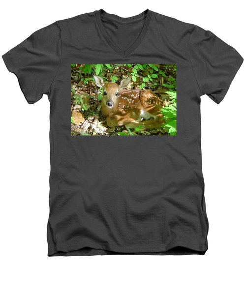 Whitetail Fawn II Men's V-Neck T-Shirt