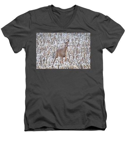 Whitetail In Frosted Corn 537 Men's V-Neck T-Shirt