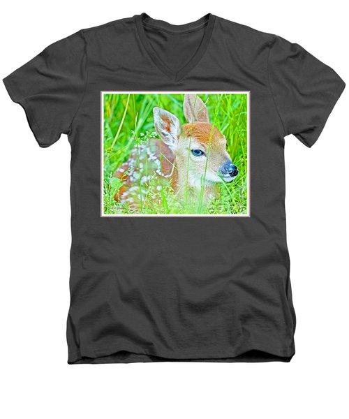 Whitetailed Deer Fawn Men's V-Neck T-Shirt