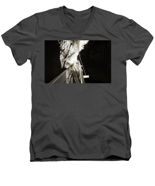 Whitewater Walk Men's V-Neck T-Shirt by Jan W Faul