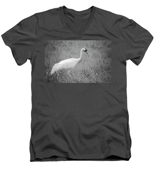 Whooping Crane 2017-4 Men's V-Neck T-Shirt by Thomas Young