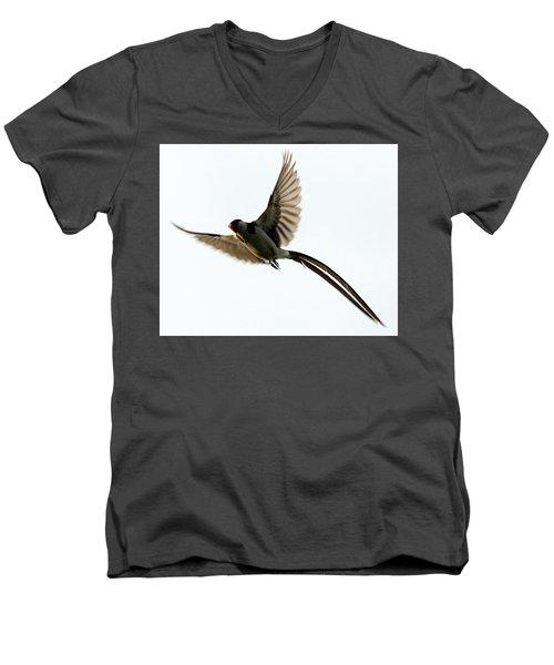 Whydah Abstract I Men's V-Neck T-Shirt
