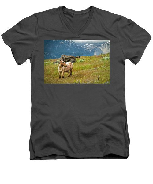 Wild Appaloosa Horse Men's V-Neck T-Shirt