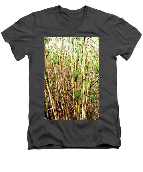 Wild Bamboo Men's V-Neck T-Shirt