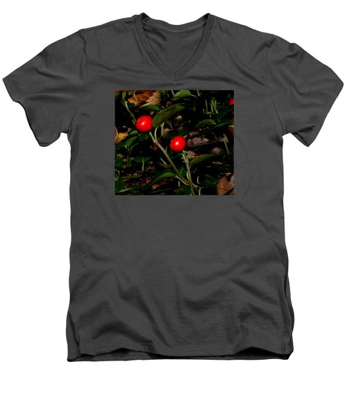 Wild Berries Men's V-Neck T-Shirt