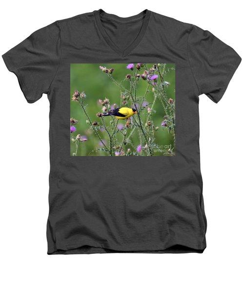 Wild Birds - American Goldfinch Male Men's V-Neck T-Shirt