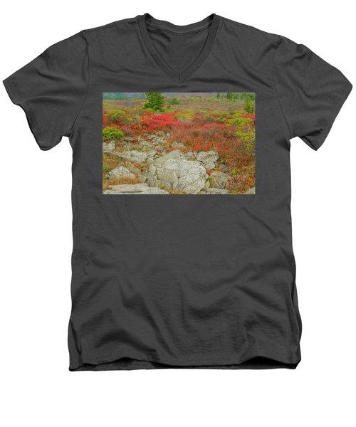 Wild Blueberries Men's V-Neck T-Shirt