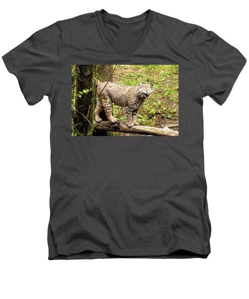 Wild Bobcat In Mountain Setting Men's V-Neck T-Shirt by Teri Virbickis