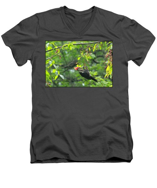 Wild Cherry Snack Men's V-Neck T-Shirt