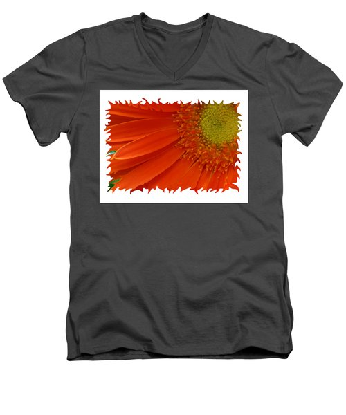 Men's V-Neck T-Shirt featuring the photograph Wild Daisy by Shari Jardina