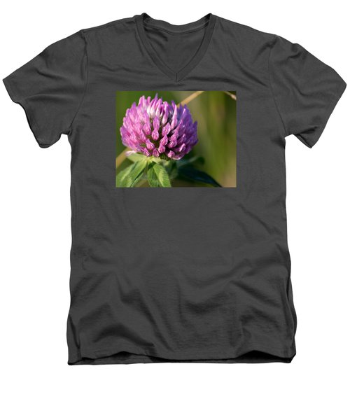 Wild Flower Bloom  Men's V-Neck T-Shirt
