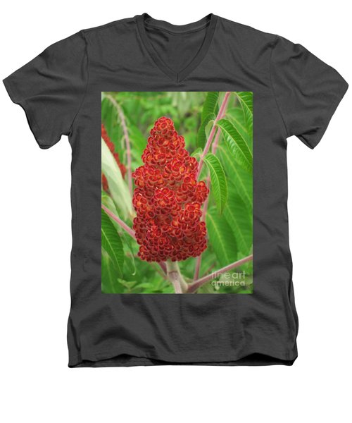 Wild Flowers 11 Men's V-Neck T-Shirt