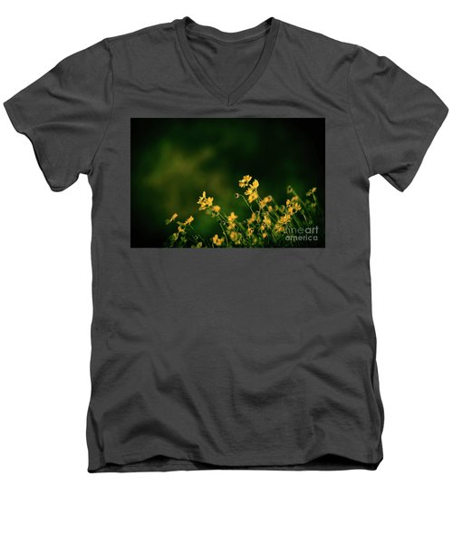 Men's V-Neck T-Shirt featuring the photograph Evening Wild Flowers by Kelly Wade