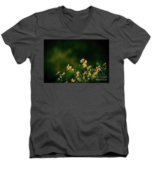 Evening Wild Flowers Men's V-Neck T-Shirt