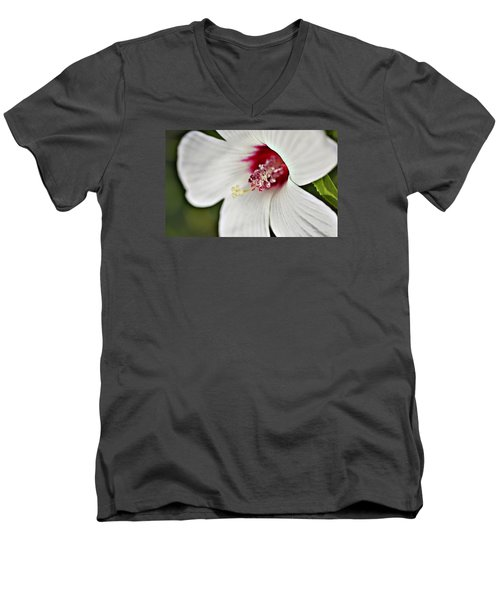 Wild Hibiscus Moscheutos_2a Men's V-Neck T-Shirt