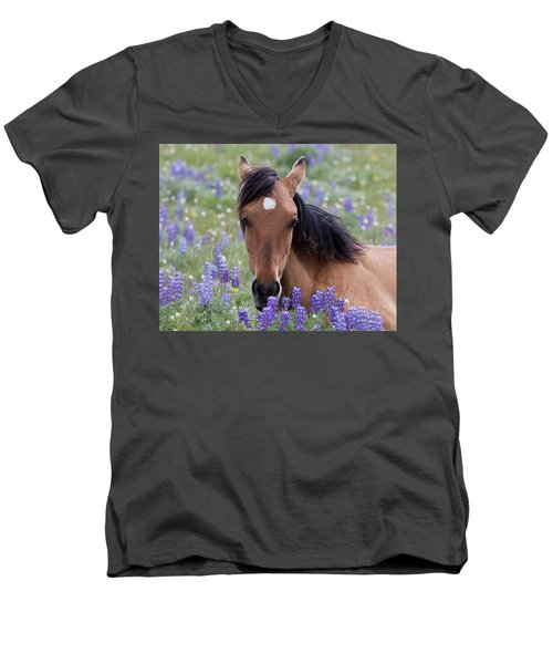 Wild Horse Among Lupines Men's V-Neck T-Shirt