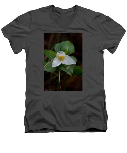 Wild Lily Men's V-Neck T-Shirt by Adria Trail
