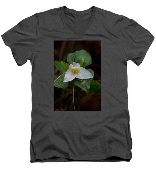 Wild Lily Men's V-Neck T-Shirt