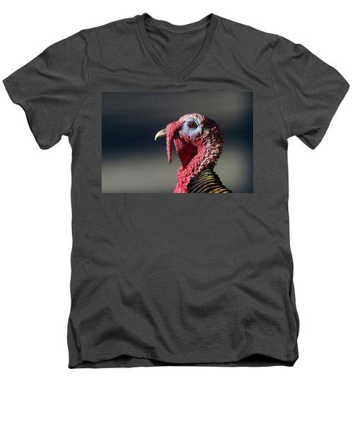 Wild Merriams Turkey Portrait  Men's V-Neck T-Shirt