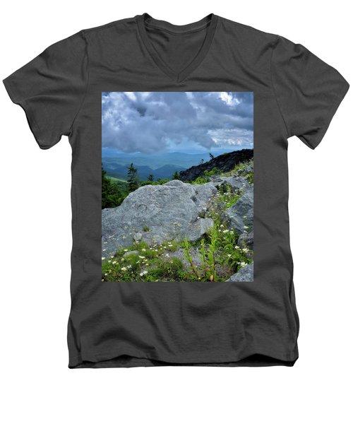 Wild Mountain Flowers Men's V-Neck T-Shirt