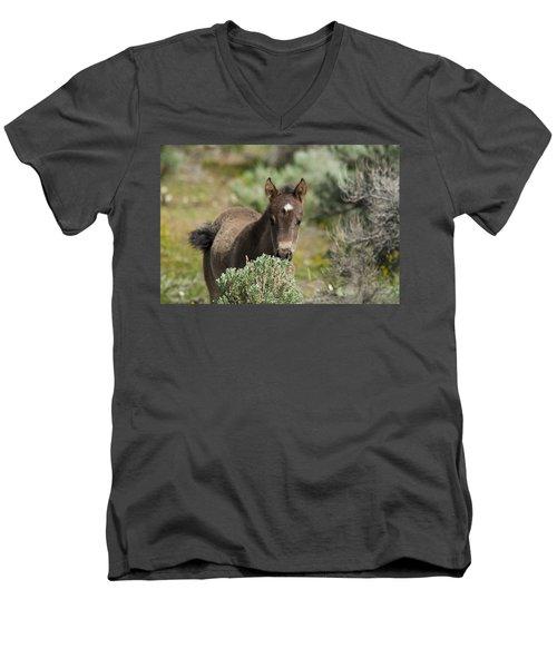 Wild Mustang Foal Men's V-Neck T-Shirt