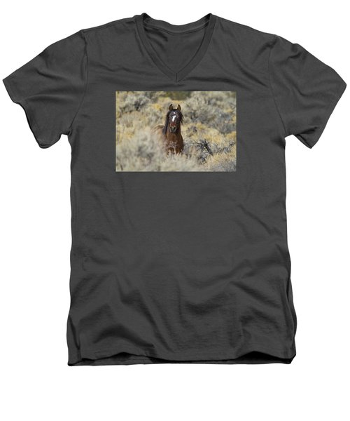 Wild Mustang Stallion Men's V-Neck T-Shirt