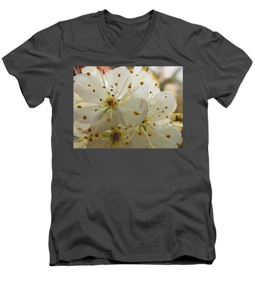 Wild Sand Plum  Men's V-Neck T-Shirt