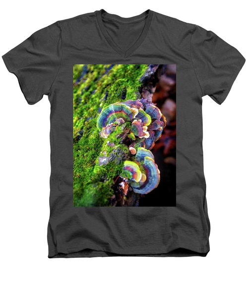 Men's V-Neck T-Shirt featuring the photograph Wild Striped Mushroom Growing On Tree - Paradise Springs - Kettle Moraine State Forest by Jennifer Rondinelli Reilly - Fine Art Photography