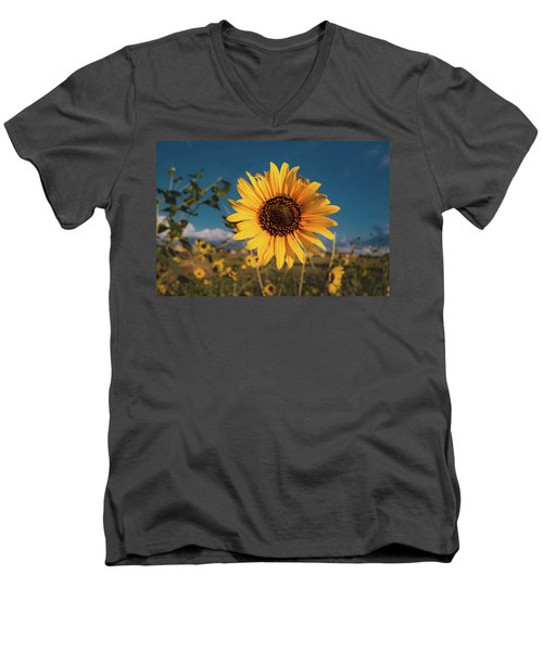 Wild Sunflower Men's V-Neck T-Shirt by Jay Stockhaus