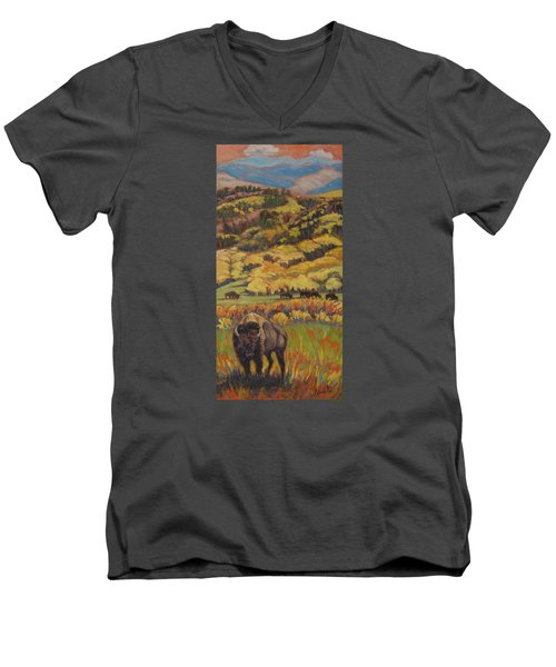 Wild West Splendor Men's V-Neck T-Shirt